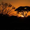 Amboseli sunrise, Amboseli National Park, Kenya, East Africa