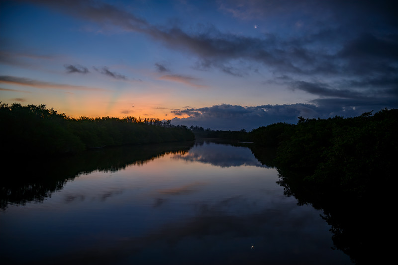 Venus rising at dawn with a quarter moon reflected in a canal on Sanibel Island, Florida