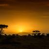 African sunrise, Ndutu, Tanzania, East Africa