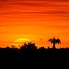 Sunrise over the Ten Thousand Islands National Wildlife Refuge, Naples, Florida