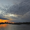 Sunrise with Sandhill Cranes, Platte River near Kearney, Nebraska