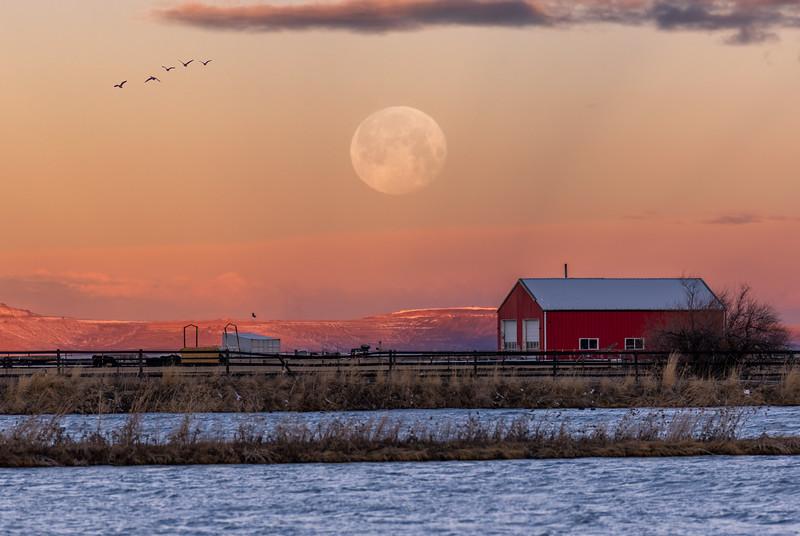 Farmington Bay Sunrise