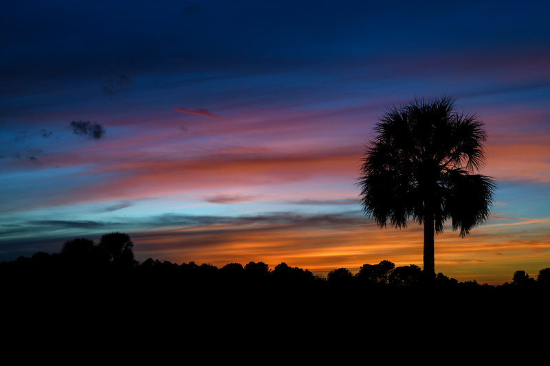 Sunset in Babcock Wildlife Management Area, Punta Gorda, Florida