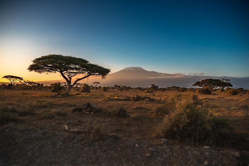 Sunrise over Mt. Kilimanjaro, Amboseli National Park, Kenya, East Africa