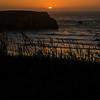 Dune grass in front of Table Rock at sunset, Bandon Beach, Oregon