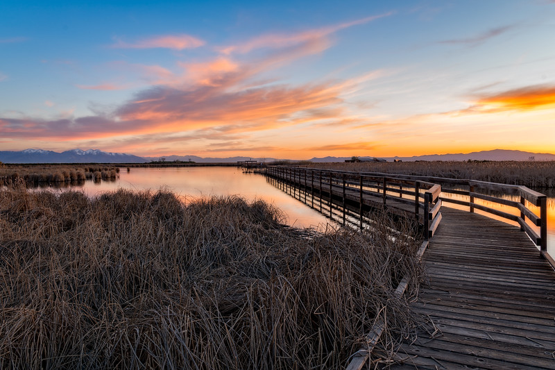 Farmington Bay Bird Refuge Sunset