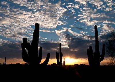 Sunset-April 11,2011_Apr112011_0170