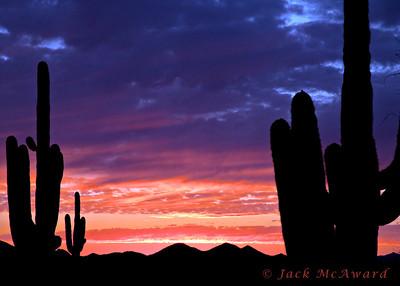 Sunset-April 11,2011 #01966 copy