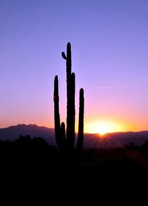 Sunrise at 4-Peaks