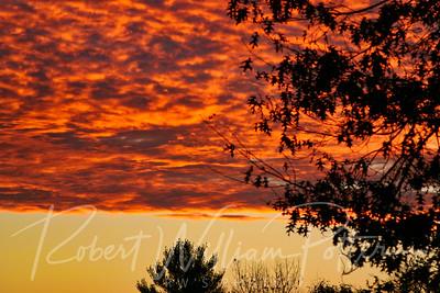 3171-Sunrise