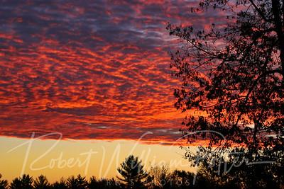 3158-Sunrise