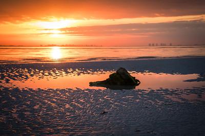 Low tide, Sanibel Island, FL