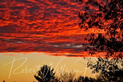3155-Sunrise
