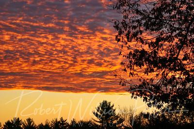 3176-Sunrise