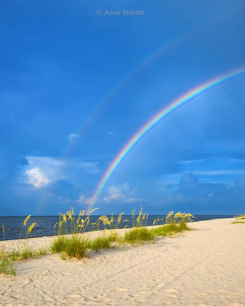 Rainbow-DBLBVert1