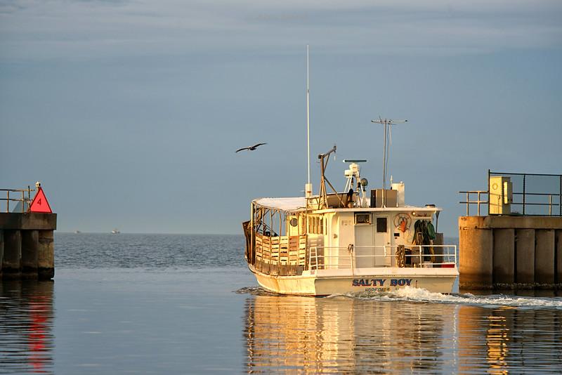 Boat-SaltyBoy
