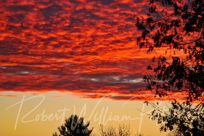 3154-Sunrise