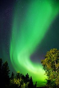 Fall Aurora 003