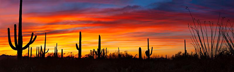 9050* Sunset