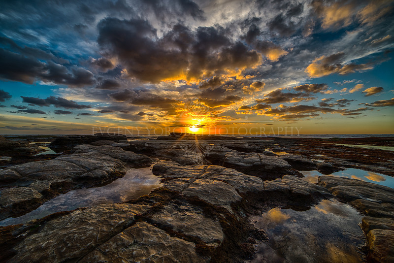 Sunset Cliffs At Low Tide