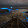 Bioluminescence at Sunset Cliffs