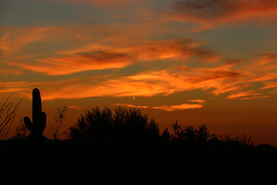 Sunset Jan 16 2017 Quartzsite AZ