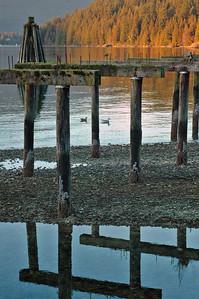 2006 02 09-Burrard Inlet 019 velvia