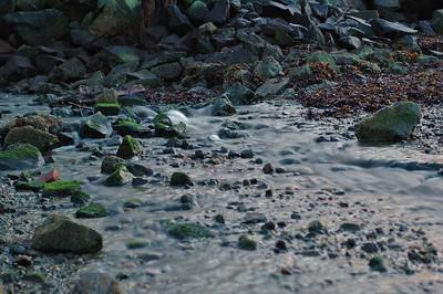 2006 02 09-Burrard Inlet 154 velvia