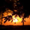 MH 05 - Sunrise on the Upper Fox River near Omro