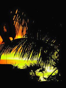 Cuban Sunset 1
