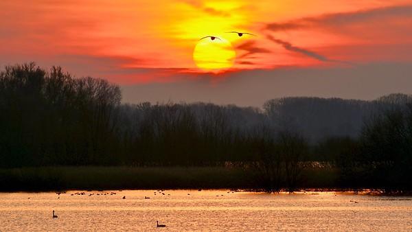 Sunrise - Schulensmeer