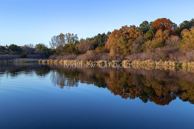 Fall autumn colors with vegetation and sky reflections in Ed Zorinsky Lake Omaha NE at sunset.