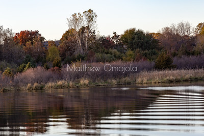 Close up Fall autumn colors. Ripples and reflections in Ed Zorinsky Lake Omaha NE at sunset.