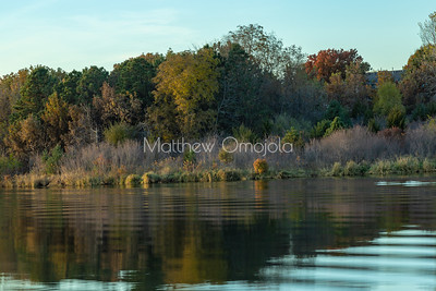 Close up Fall autumn colors with sun and vegetation reflections in Ed Zorinsky Lake Omaha NE at sunset.
