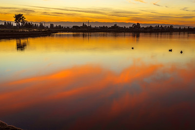 Sunset at Shoreline Park