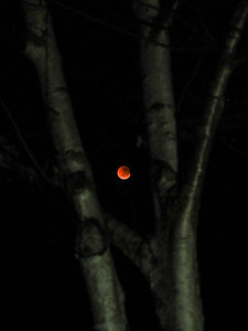 Blood moon, lunar eclipse