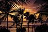 WaikikiSunset_101319-001