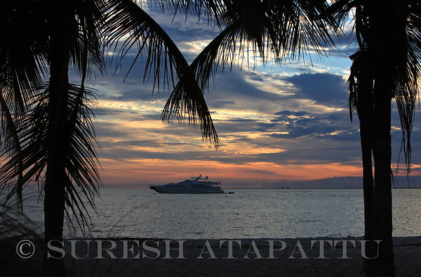 ©2015 Suresh Atapattu: All Rights Reserved: Not for use in any form without the express written permission of the photographer
