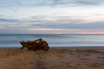 Sunset. Driftwood. Waddell Beach. Big Basin State Park, CA, USA