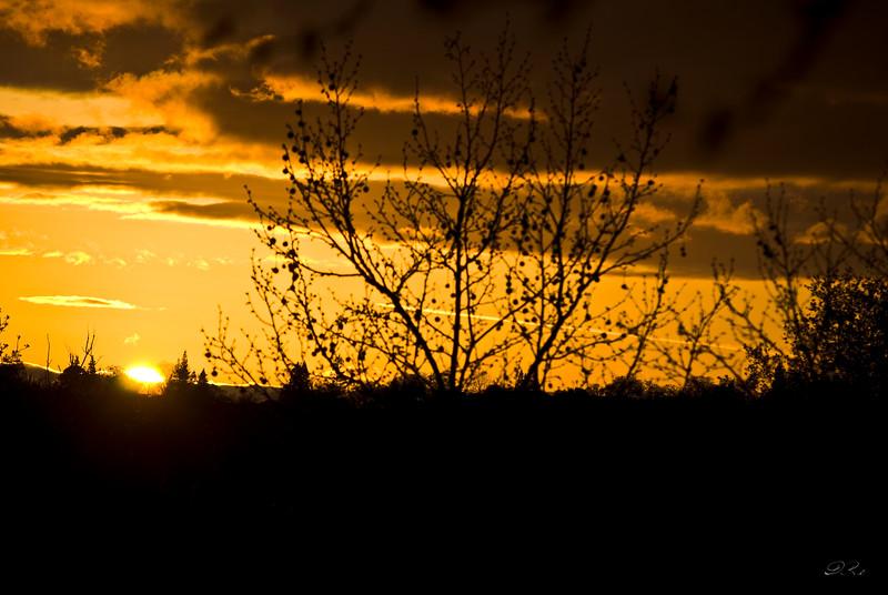 Folsom Sunset