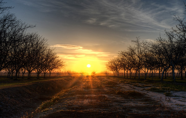 Yuba Country Sunset