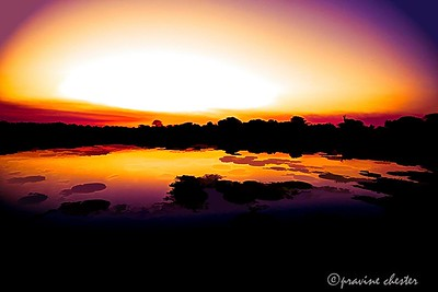 Sunset in Pantanal