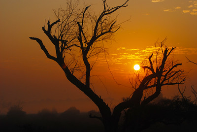 Sun setting in the Uttarakhand hills in India