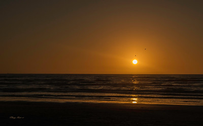 Sunrise - Port Aransas, TX