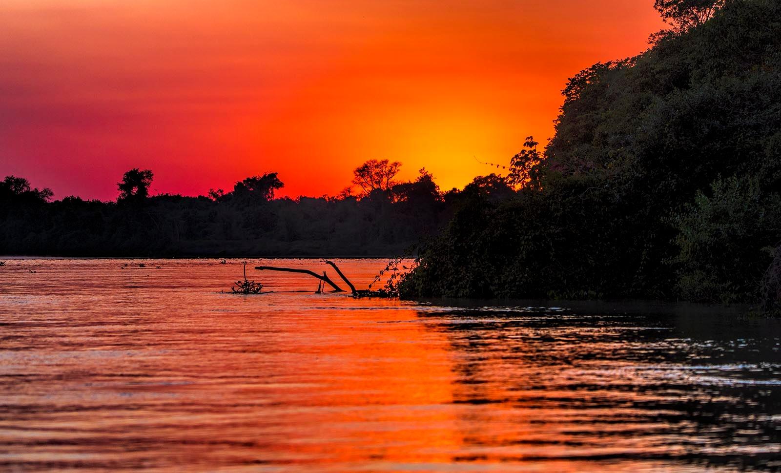 Sunrise in the Pantanal