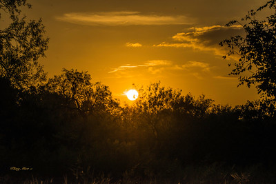 Sunrise -Crescent Bend Nature Park, Schertz, TX