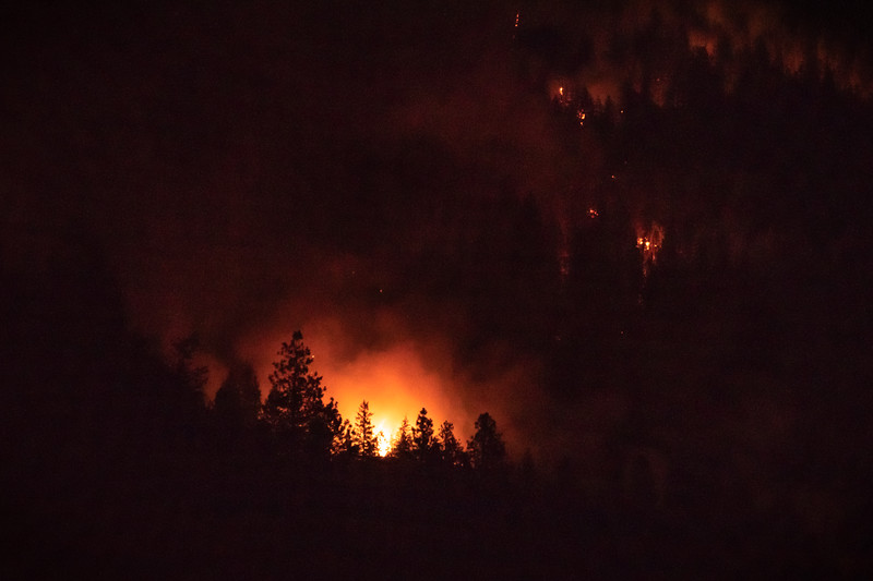 Syringa Forest Fire