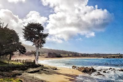 Cyprus on Monastery Beach