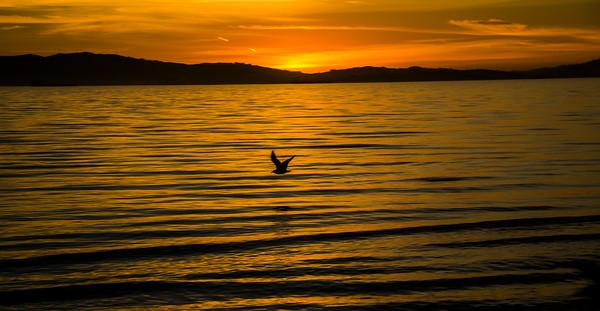 Sunset Passages