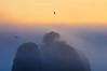 The Mists of La Push